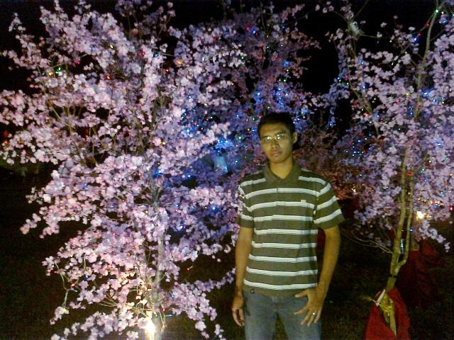 Bunga Mei Hwa